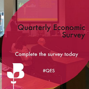 British Chambers of Commerce Quarterly Economic Survey (QES) for Q1 2019