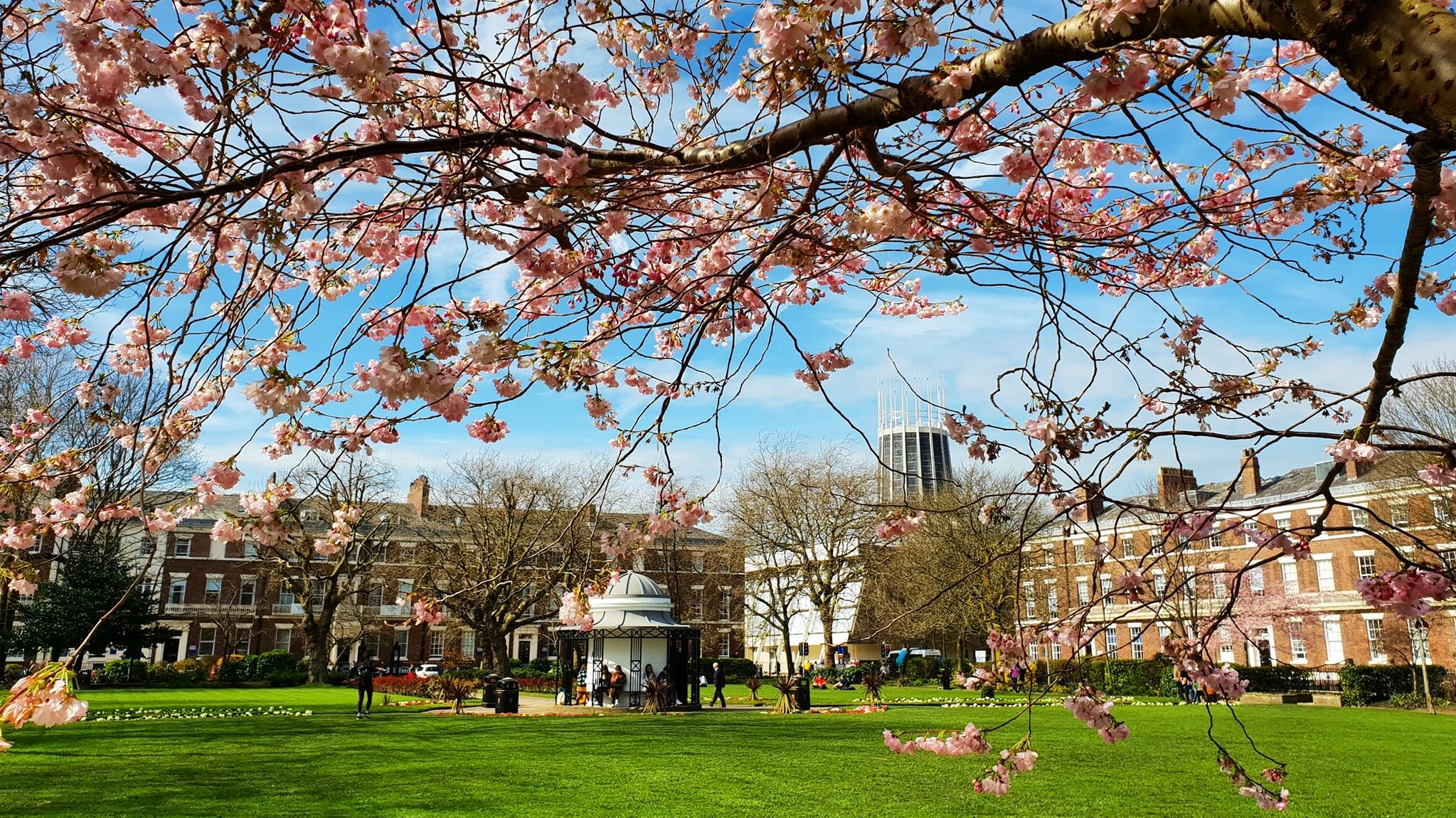 Get involved with University of Liverpool's Wellbeing Week